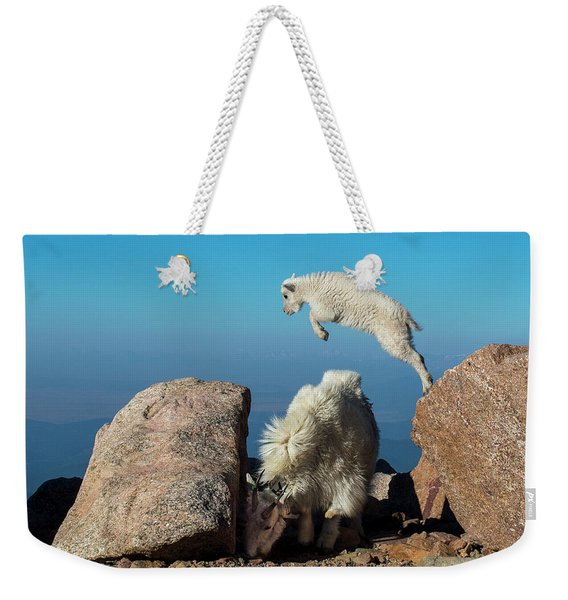 Leaping Baby Mountain Goat Weekender Tote Bag