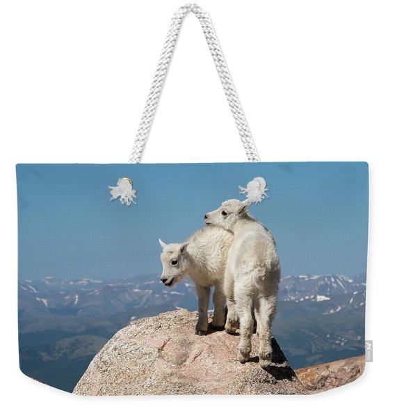 Frisky Mountain Goat Babies Weekender Tote Bag