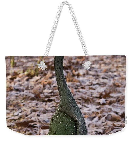 Frosted Goose Weekender Tote Bag