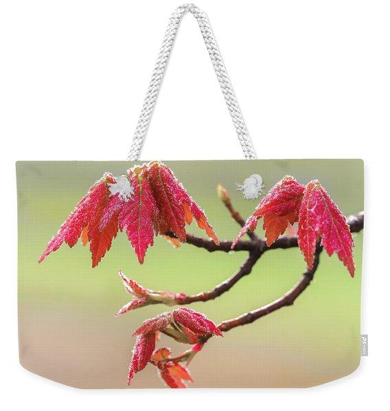 Frosty Maple Leaves Weekender Tote Bag