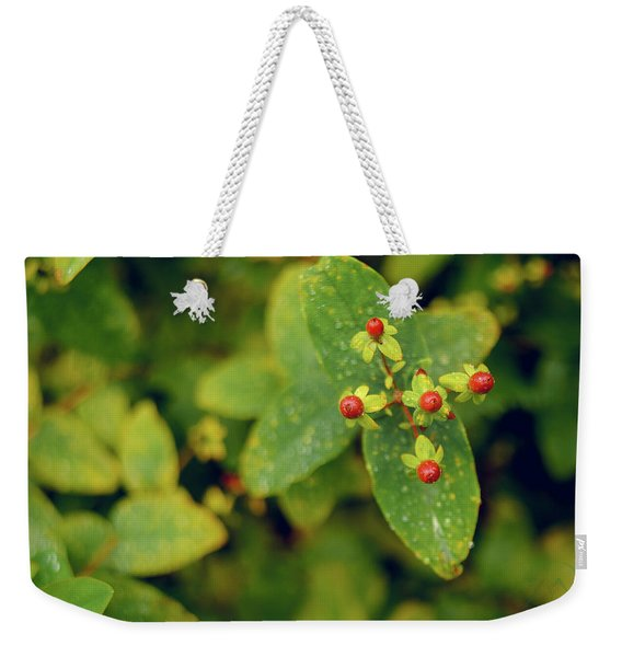 Fall Berry Weekender Tote Bag
