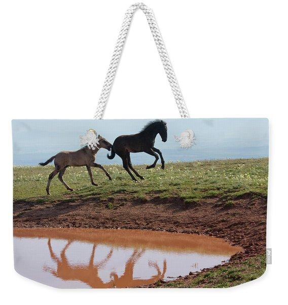 Fun In The Rockies- Wild Horse Foals Weekender Tote Bag