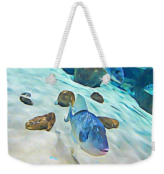Funny Fish Weekender Tote Bag