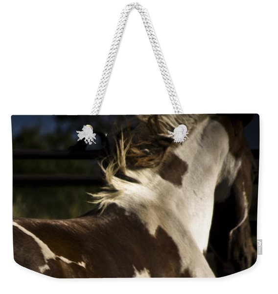 Weekender Tote Bag featuring the photograph Galisteo 1 by Catherine Sobredo