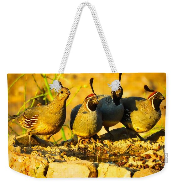 Gambel's Quail Foursome Weekender Tote Bag