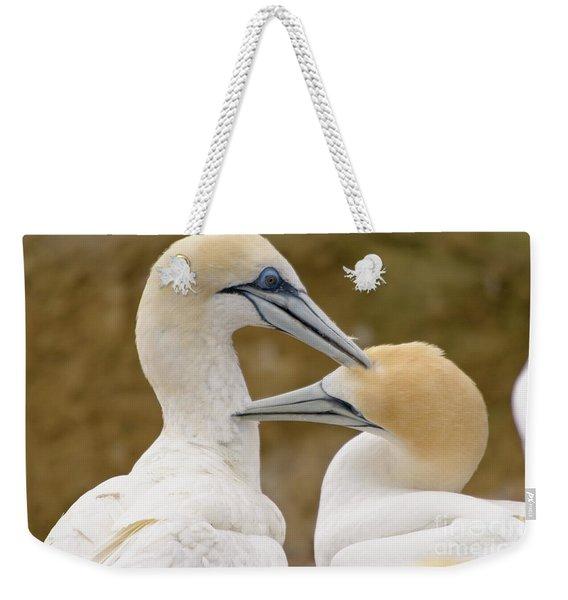 Gannet Pair 1 Weekender Tote Bag