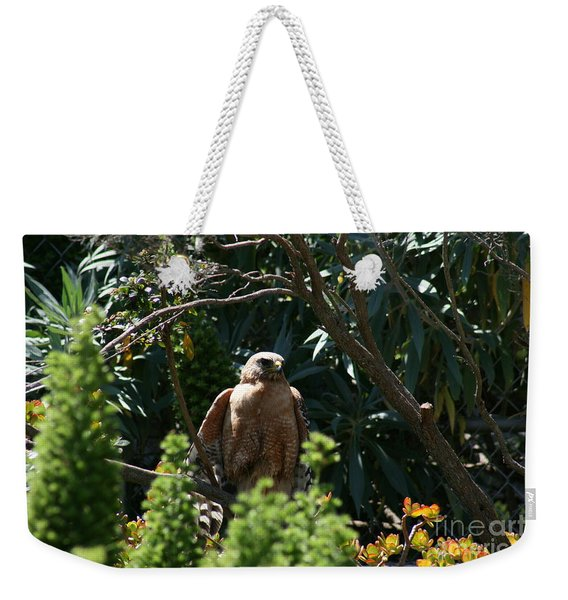 Weekender Tote Bag featuring the photograph Garden Rest by Cynthia Marcopulos