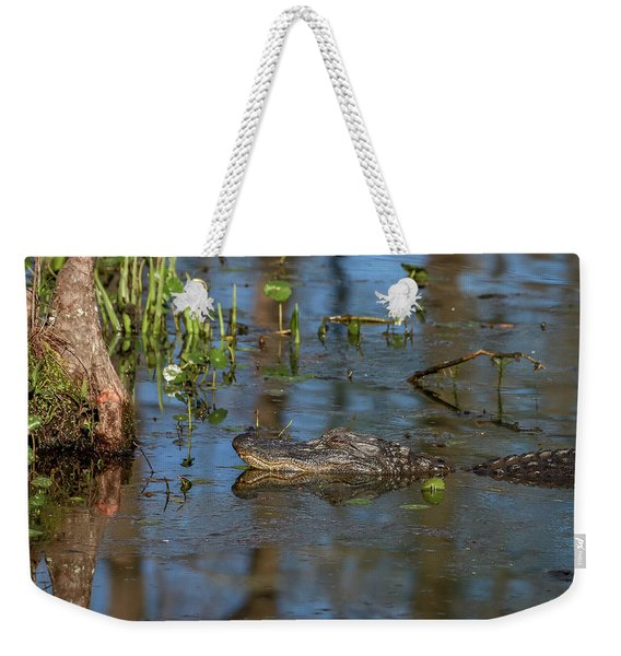 Gator In Cypress Lake 3 Weekender Tote Bag