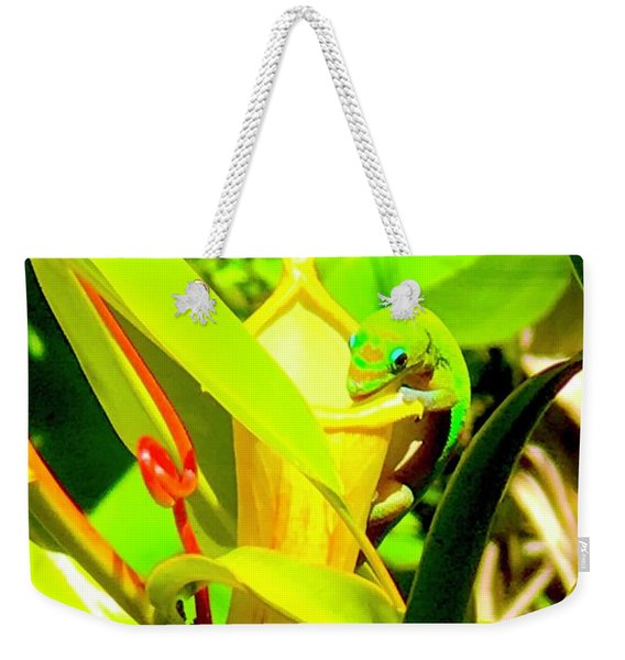 Gecko On Mosquito Catcher Orchid Weekender Tote Bag