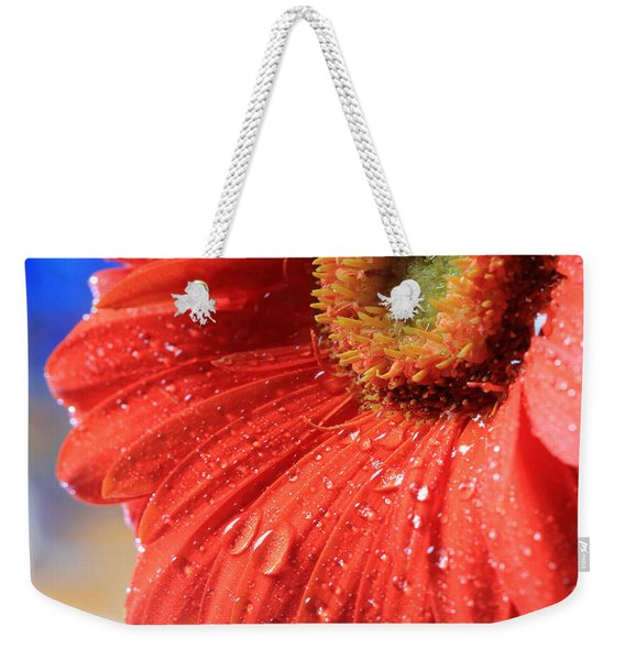 Gerbera Daisy After The Rain Weekender Tote Bag