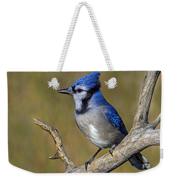 Get Ready Weekender Tote Bag