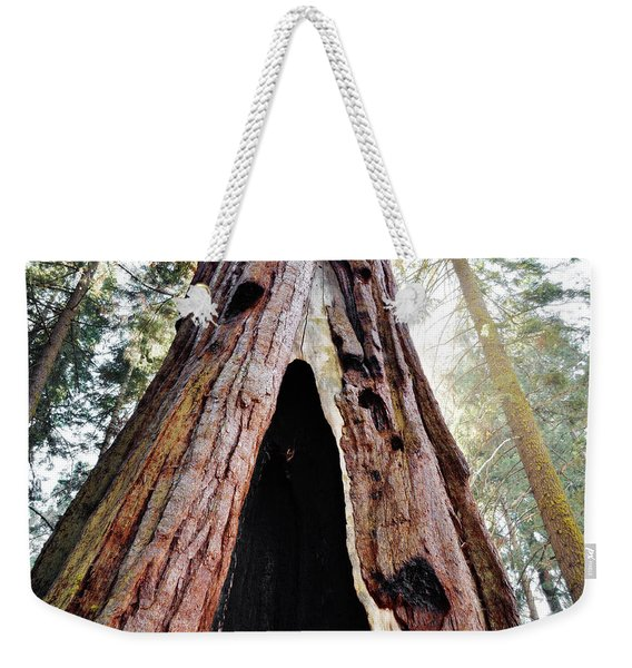 Giant Forest Giant Sequoia Weekender Tote Bag