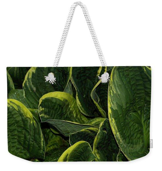 Giant Hosta Closeup Weekender Tote Bag