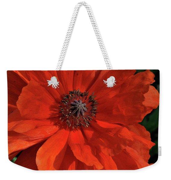 Giant Mountain Poppy Weekender Tote Bag