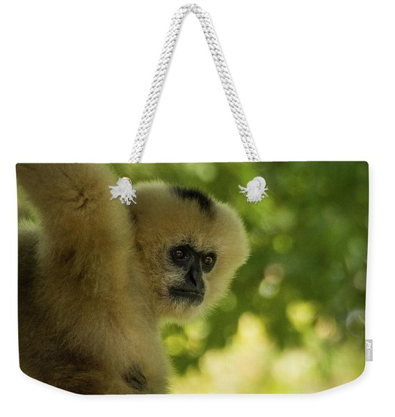 Gibbon Portrait Weekender Tote Bag