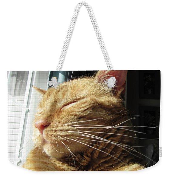 Ginger Tabby Weekender Tote Bag