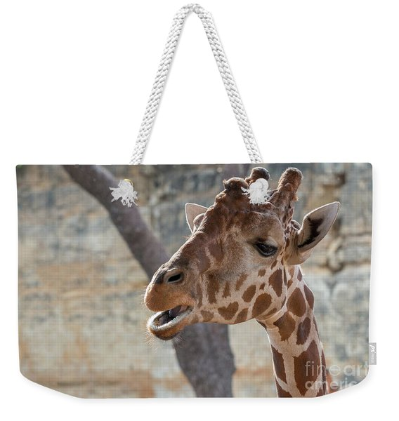 Girafe Head About To Grab Food Weekender Tote Bag