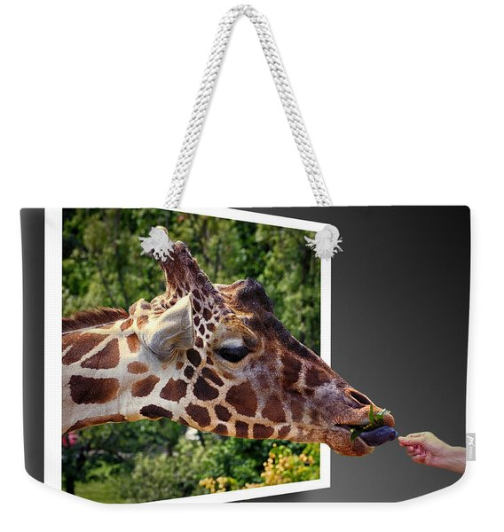 Giraffe Feeding Out Of Frame Weekender Tote Bag