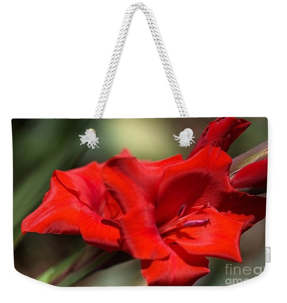 Gladioli Manhattan Variety  Weekender Tote Bag