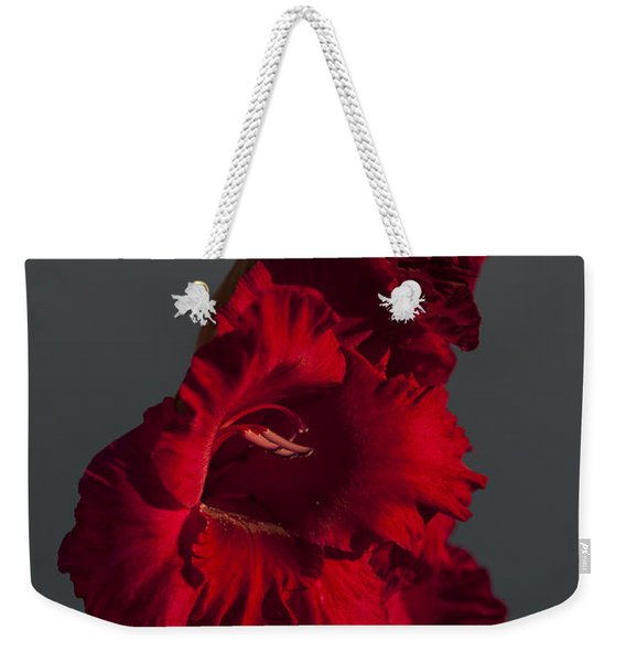 Gladiolus Against A Dark Cloud Weekender Tote Bag