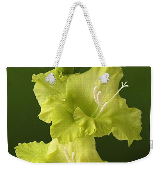 Glads Weekender Tote Bag