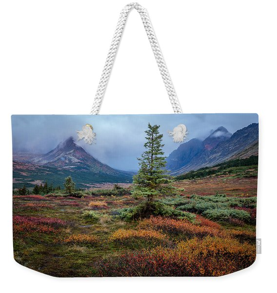 Weekender Tote Bag featuring the photograph Glen Alps In The Autumn Rain by Tim Newton