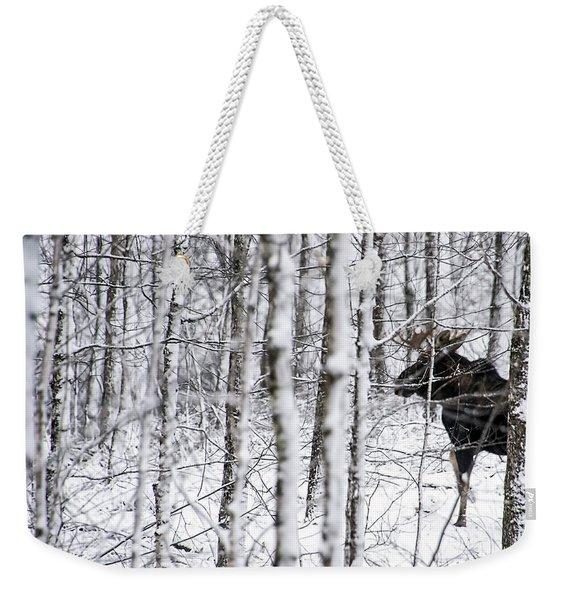 Glimpse Of Bull Moose Weekender Tote Bag
