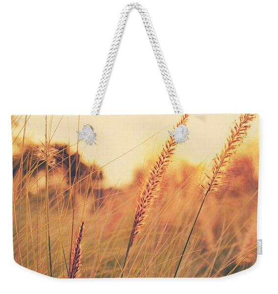 Glowing Fountain Grass - Hipster Photo Square Weekender Tote Bag