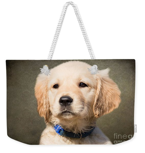 Golden Labrador Puppy Weekender Tote Bag