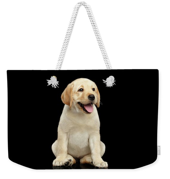 Golden Labrador Retriever Puppy Isolated On Black Background Weekender Tote Bag