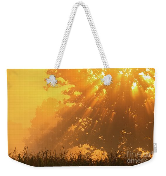 Golden Sunlight Blessings Weekender Tote Bag