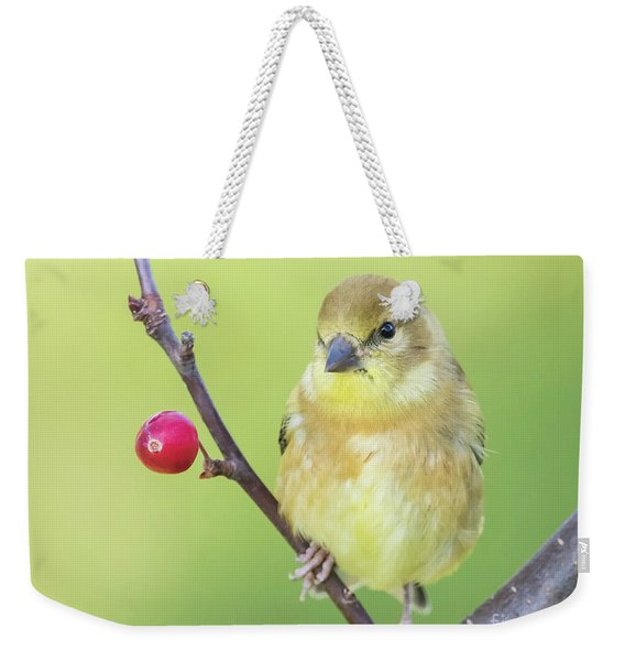 Goldfinch In The Backyard Weekender Tote Bag