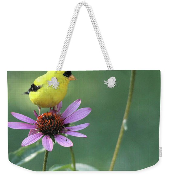 Goldfinch On A Coneflower Weekender Tote Bag