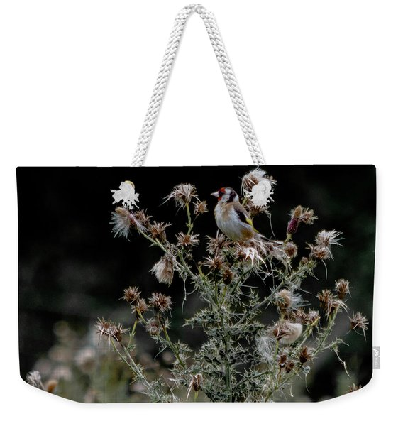 Weekender Tote Bag featuring the photograph Goldfinch Sitting On A Thistle by Scott Lyons