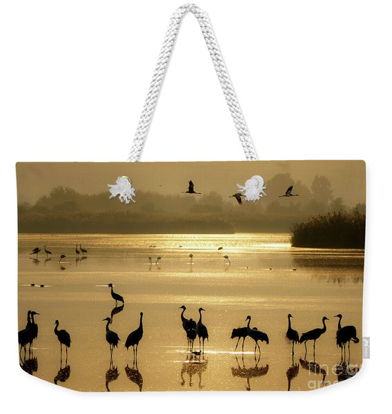 Weekender Tote Bag featuring the photograph Good Morning Chula Lake by Arik Baltinester