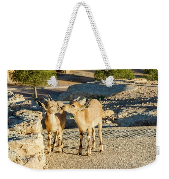 Weekender Tote Bag featuring the photograph Good Morning Kiss by Arik Baltinester