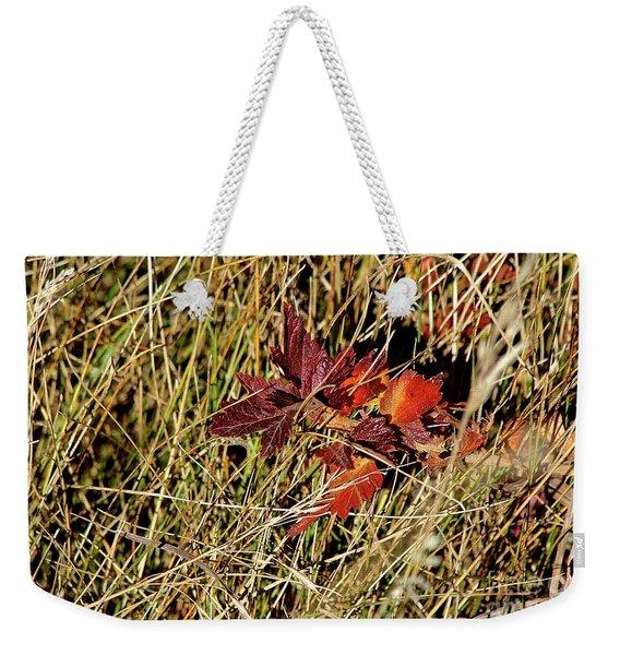 Gooseberry In Fall Weekender Tote Bag