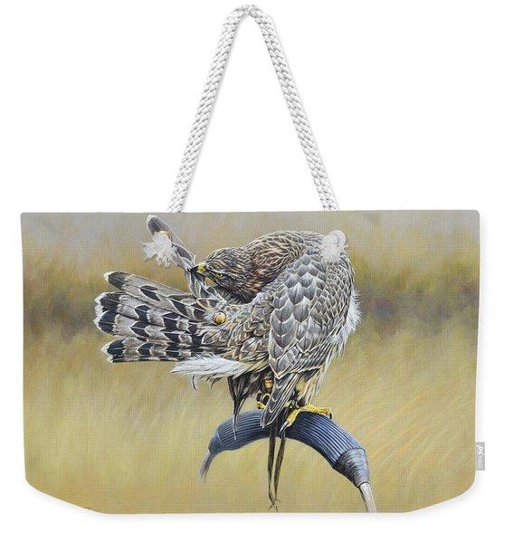 Weekender Tote Bag featuring the painting Goshawk Preening by Alan M Hunt