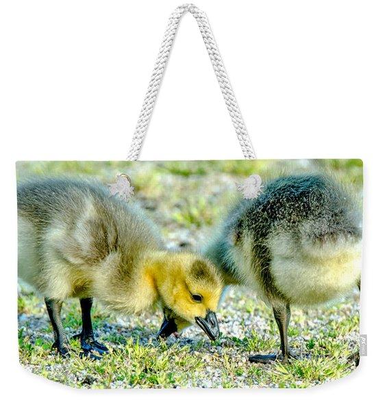 Goslings Snacking Weekender Tote Bag