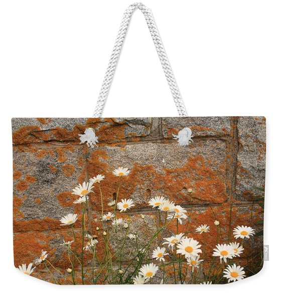 Granite Daisies Weekender Tote Bag