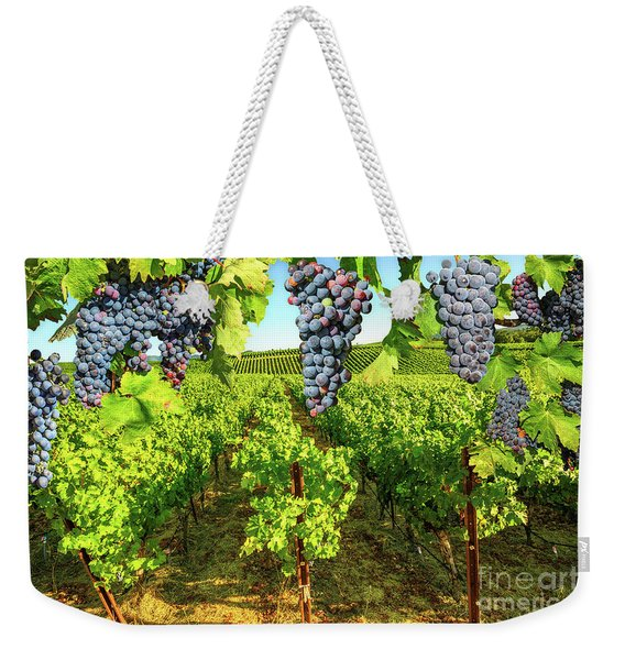 Weekender Tote Bag featuring the photograph Grape Plantation Napa Valley by Benny Marty
