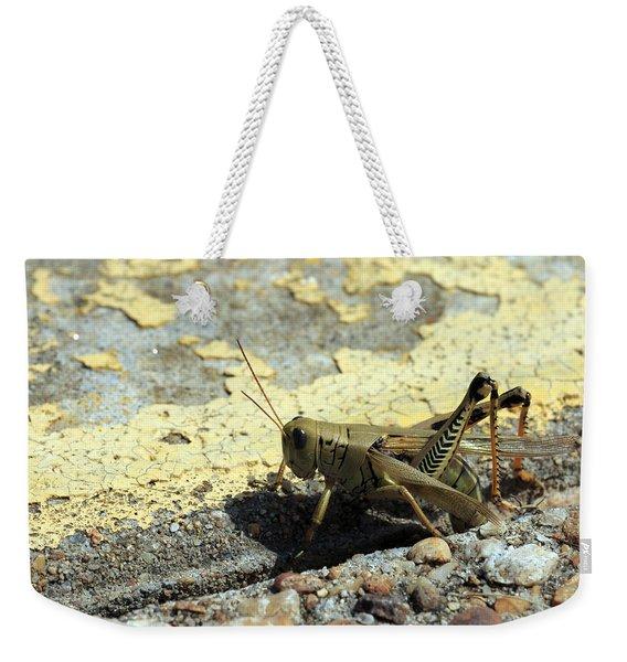 Grasshopper Laying Eggs Weekender Tote Bag