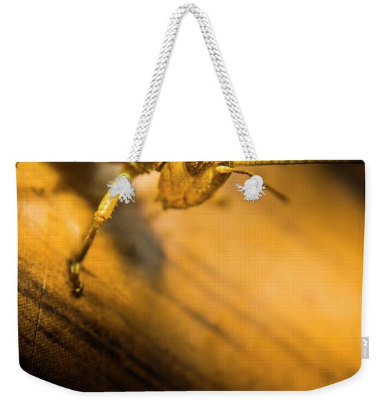 Grasshopper Under Shining Yellow Light Weekender Tote Bag
