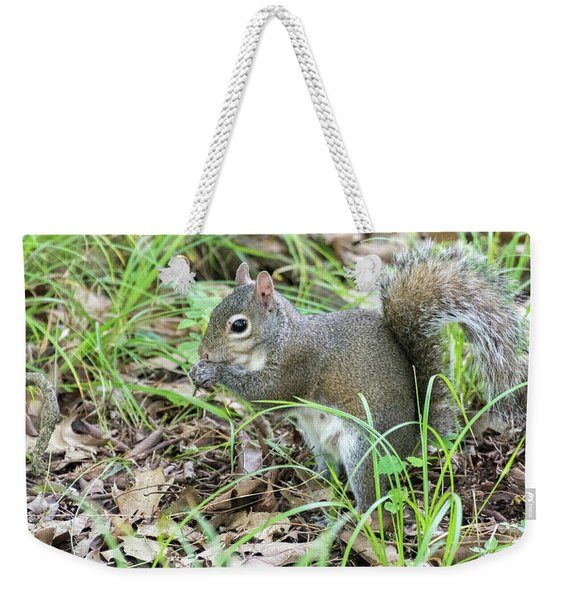 Gray Squirrel Eating Weekender Tote Bag