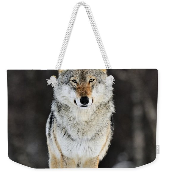Gray Wolf In The Snow Weekender Tote Bag