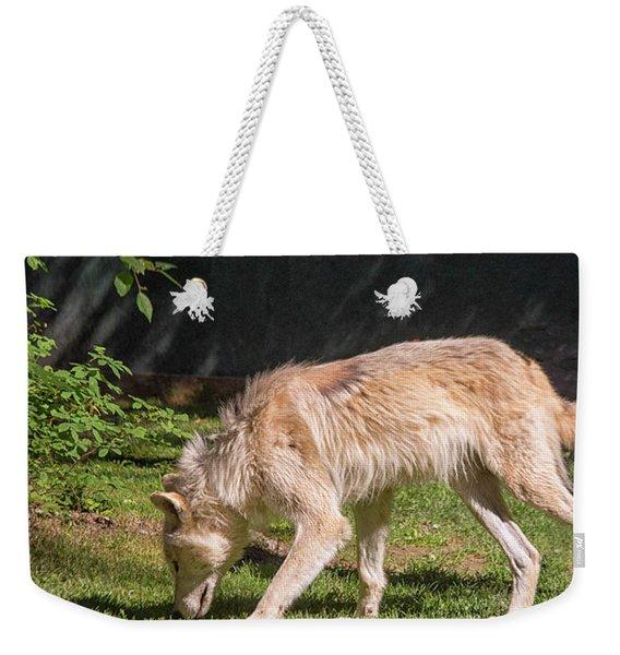 Gray Wolfe  Weekender Tote Bag
