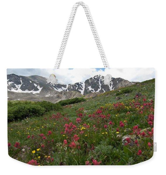 Gray's And Torreys Weekender Tote Bag