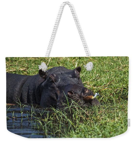 The Hippo And The Jacana Bird Weekender Tote Bag
