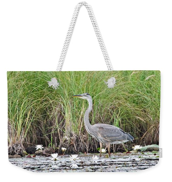 Great Blue Heron 6209 Weekender Tote Bag