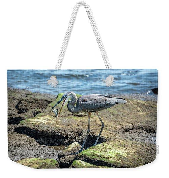 Great Blue Heron Catching A Blue Crab On Chesapeake Bay Weekender Tote Bag
